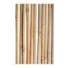 бамбук-тонкінський